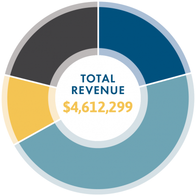 revenue-piechart