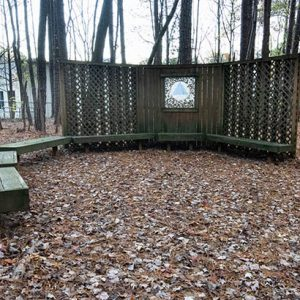 Wood benches in a park with brown leaves on the ground